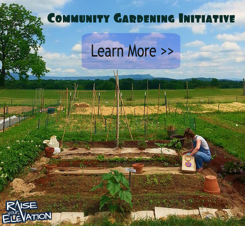 Community Gardening Initiative