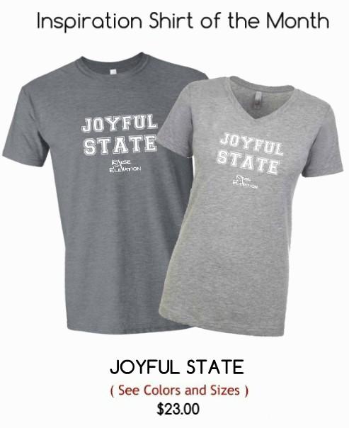 Joyful State Shirt